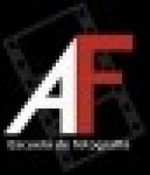 Flash Anular