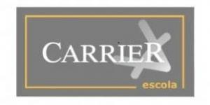 Pc Carrier