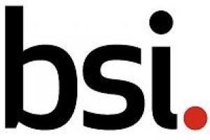 BSI Group México