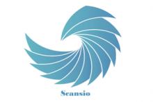 Consultoría Scansio