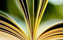 DIPLOMADO MEDICINA ALTERNATIVA (Auriculoterapia, Herbolaria, Magnetoterapia y Flores de Bach)