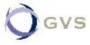 GVS CONSULTORES
