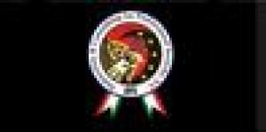 ICPS - Falcone's System International