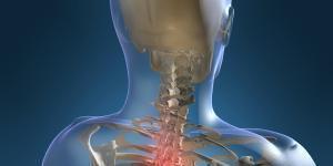 Escuela Nacional Mexicana de Medicina Osteopática