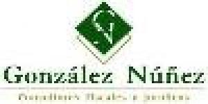 Asesores Empresariales González Núñez Celaya