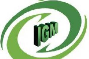 IGM Consultoria