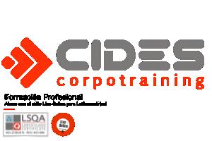 Centro de Ingenieria Y Desarrollo Industrial Cidesi
