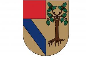 Universidad Panamericana Abierta