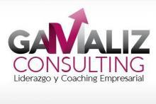 Gamaliz Consulting