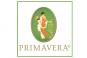 Academia PRIMAVERA-Musgo de Roble