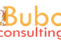 Bubo Consulting