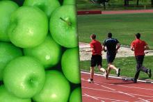Total Agents Sport - Curso Universitario de Especialización en Preparación Física, Nutrición y Psicología Deportiva