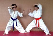 Karate para niños en Black Swan Studio
