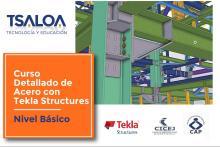Curso Básico de Modelado Estructural con TEKLA