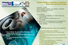 Curso on line Células Madre de Origen Dental
