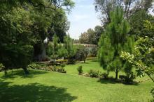 Estudio rodeado de un hermoso jardín