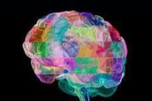 LICENCIATURA EN PSICOLOGÍA PSICOANALÍTICA: RVOE-SEP, CONACYT, SOCIEDAD INTERNACIONAL, LONDRES, UK.