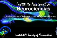 DOCTORADO EN NEUROCIENCIAS Y PSICOANÁLISIS: RVOE-SEP, CONACYT, SOCIEDAD INTERNACIONAL, LONDRES, UK.
